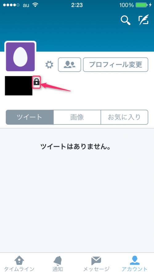 twitter-lock-check-lock-mark