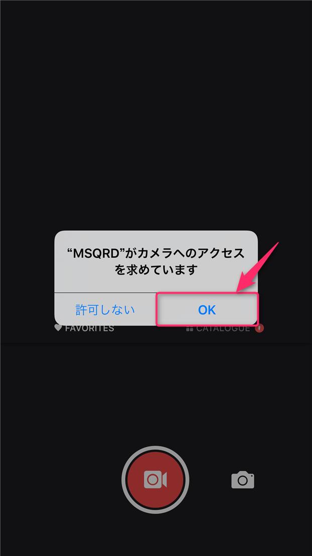 msqrd-usage-camera-access