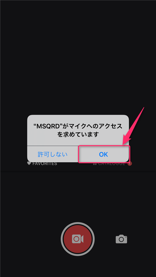 msqrd-usage-mic-access