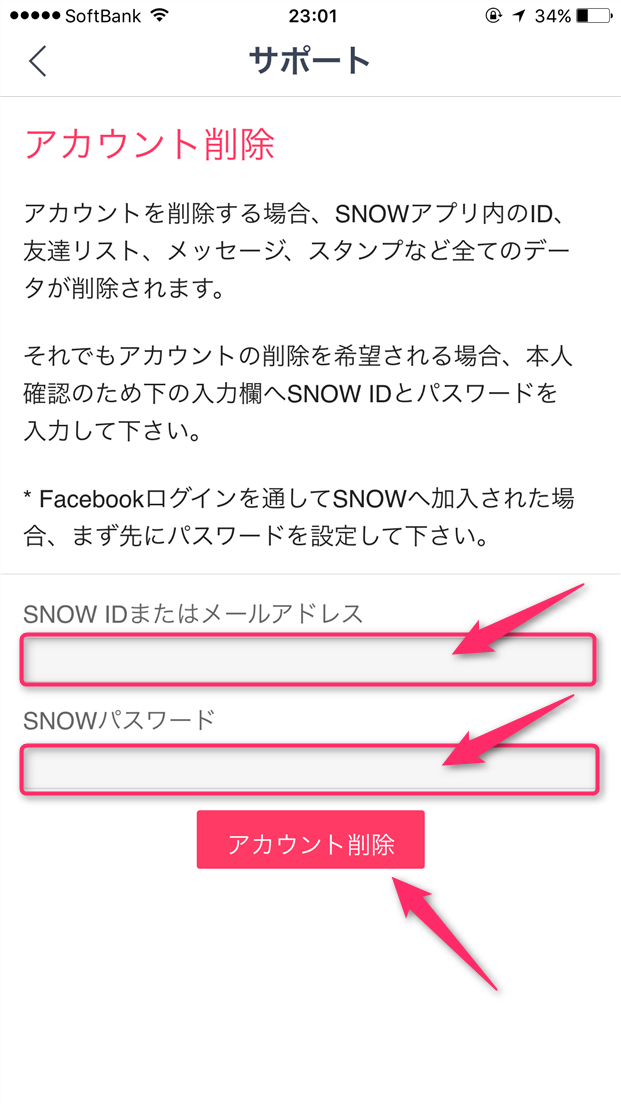 snow-delete-account-enter-form