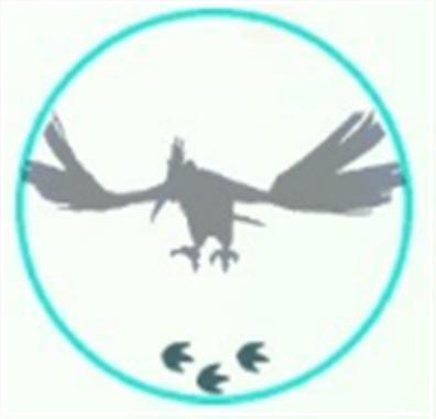 pokemon-go-silhouette-faq-onidoriru