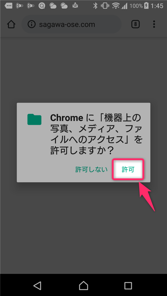 chrome needs storage access to download files